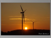 TNZ-windmills-sunset-15