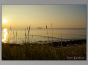 Terneuzen-sunset-16